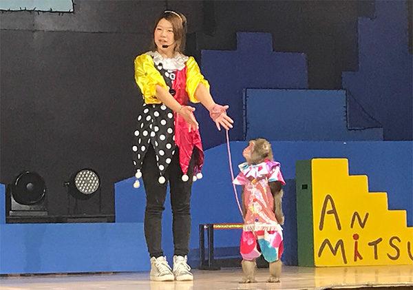神戸フルーツフラワーパーク大沢 神戸モンキーズ劇場